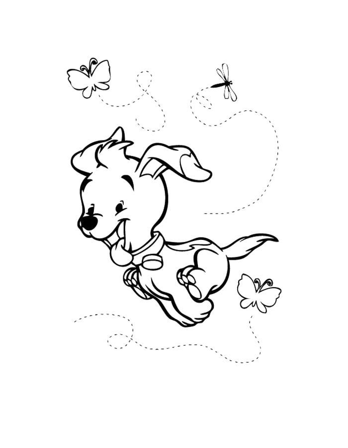Раскраска  щенок бежит. Скачать Щенок.  Распечатать Щенок