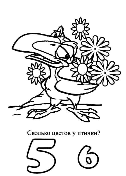 Раскраска Сколько цветов у птицы.  с заданиями. Скачать .  Распечатать