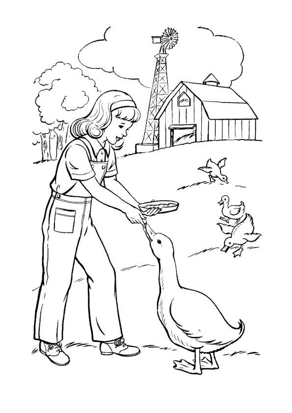 Раскраска В деревне у бабушки. . Скачать Гусь.  Распечатать Домашние животные