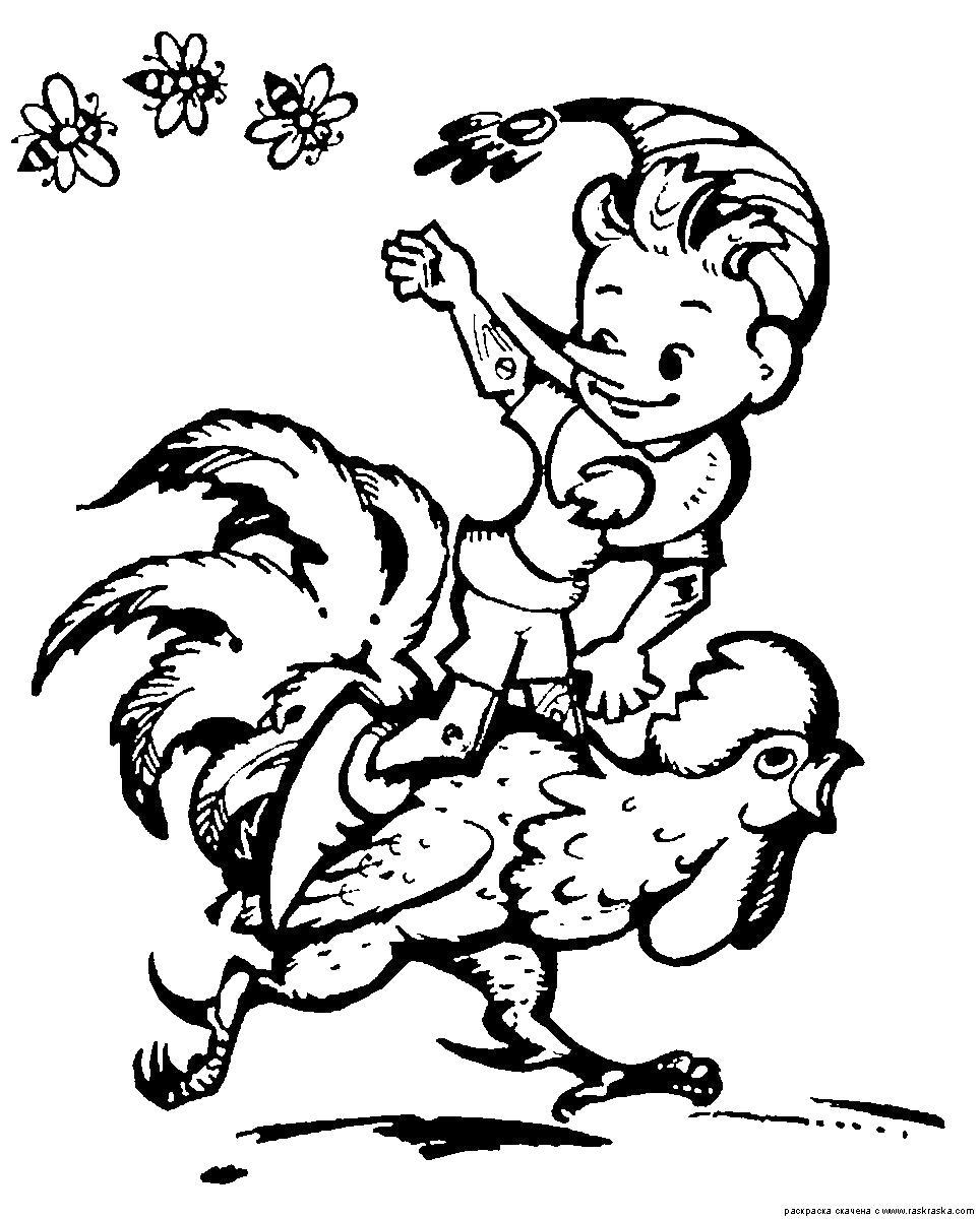 Раскраска  Буратино верхом на петухе. . Скачать Петух.  Распечатать Домашние животные