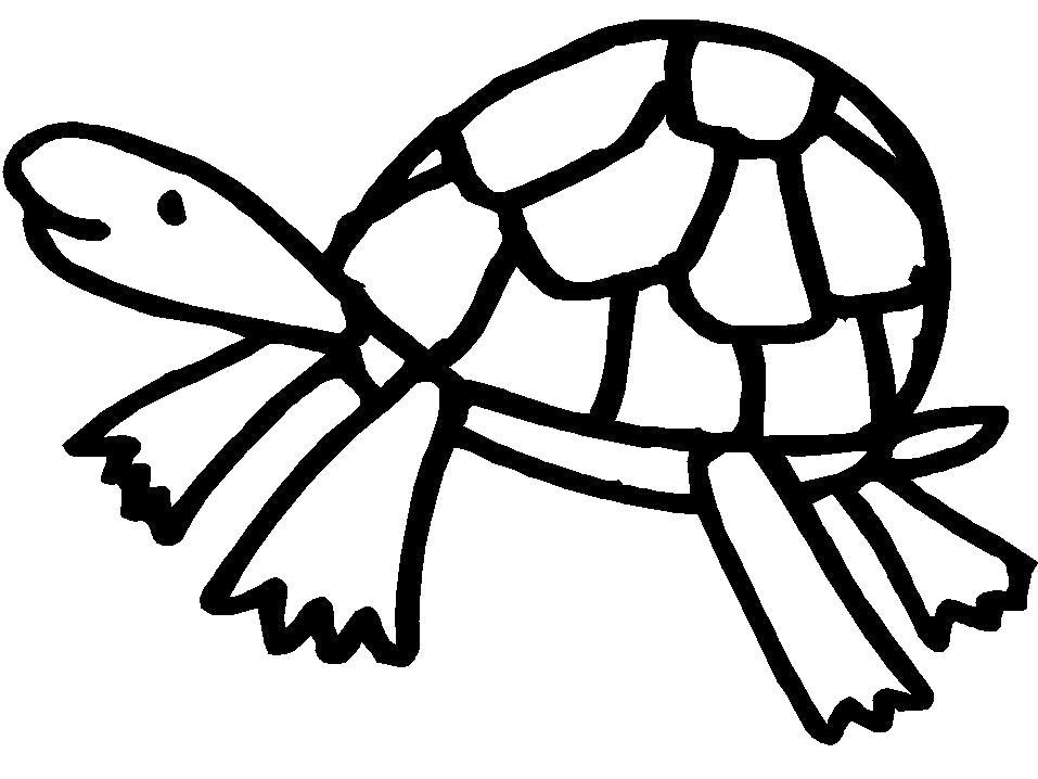 Раскраска  для детей. Веселая черепашка. Скачать Черепаха.  Распечатать Дикие животные