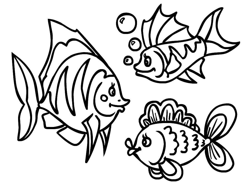 Раскраска Рисунок- рыбёшки. Скачать Рыбы.  Распечатать Морские животные