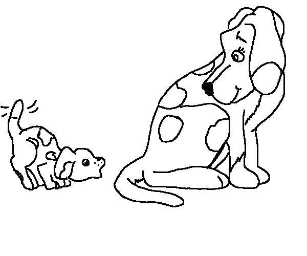 Раскраска Две собачки. Скачать Собаки.  Распечатать Собаки