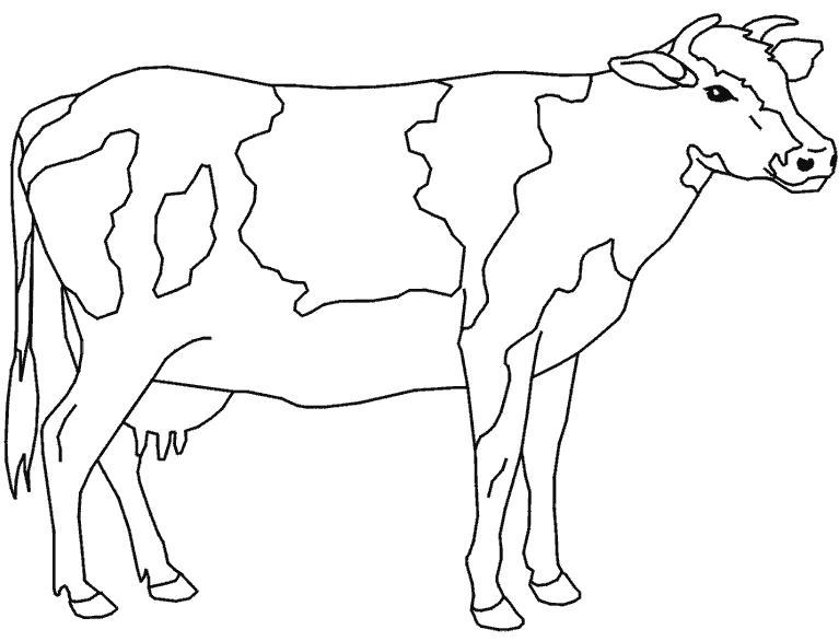 Раскраска Бурёнка. Скачать Корова.  Распечатать Домашние животные