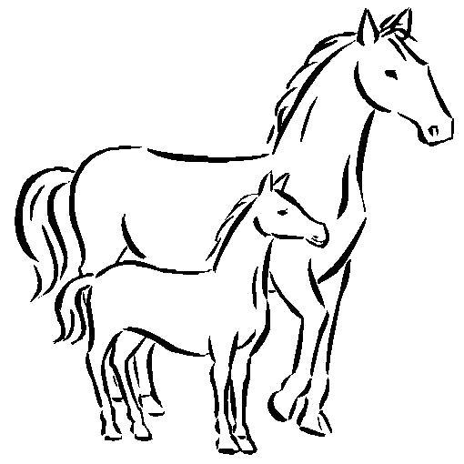 Раскраска  лошадь с жеребенком. Скачать Лошадь.  Распечатать Домашние животные