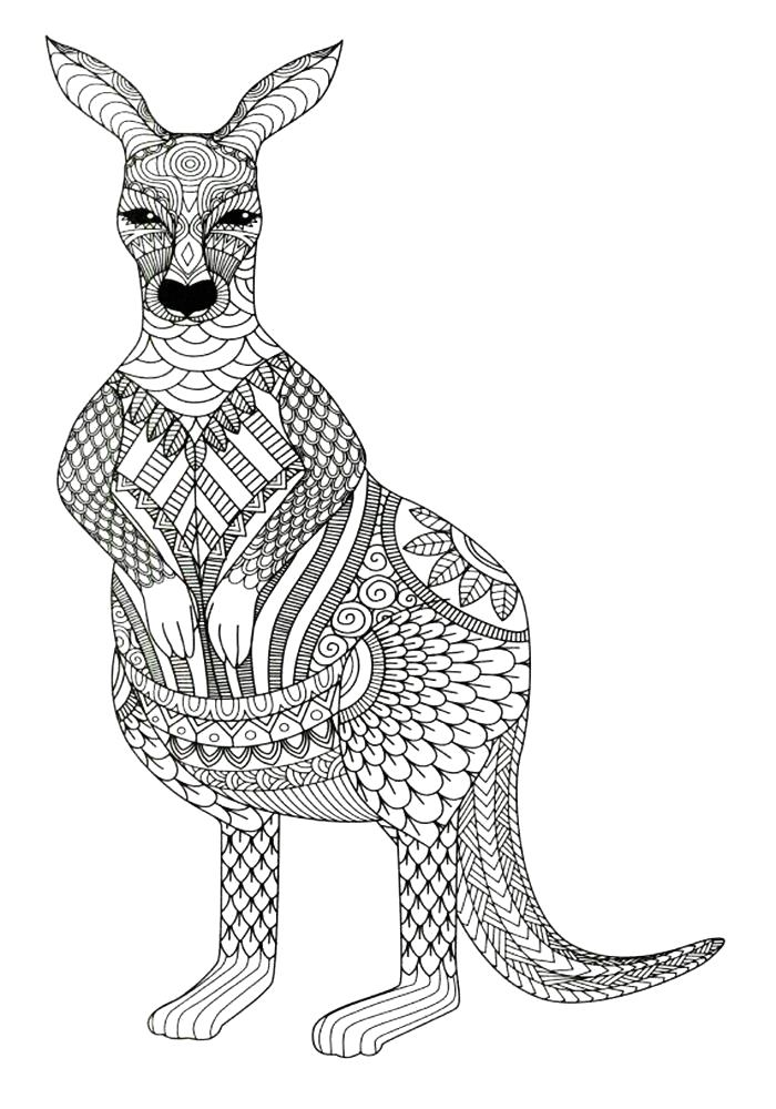 Раскраска Кенгуру. Скачать узоры, животные.  Распечатать антистресс