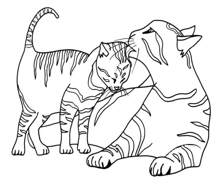 """Раскраска  """"кошка с котятами"""". Скачать кошка, Котенок.  Распечатать Домашние животные"""