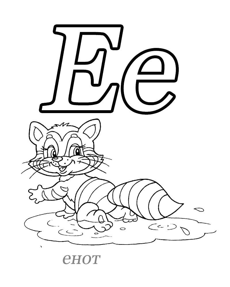Раскраска Русский алфавит, Буква Е, Енот. Скачать Азбука.  Распечатать Азбука