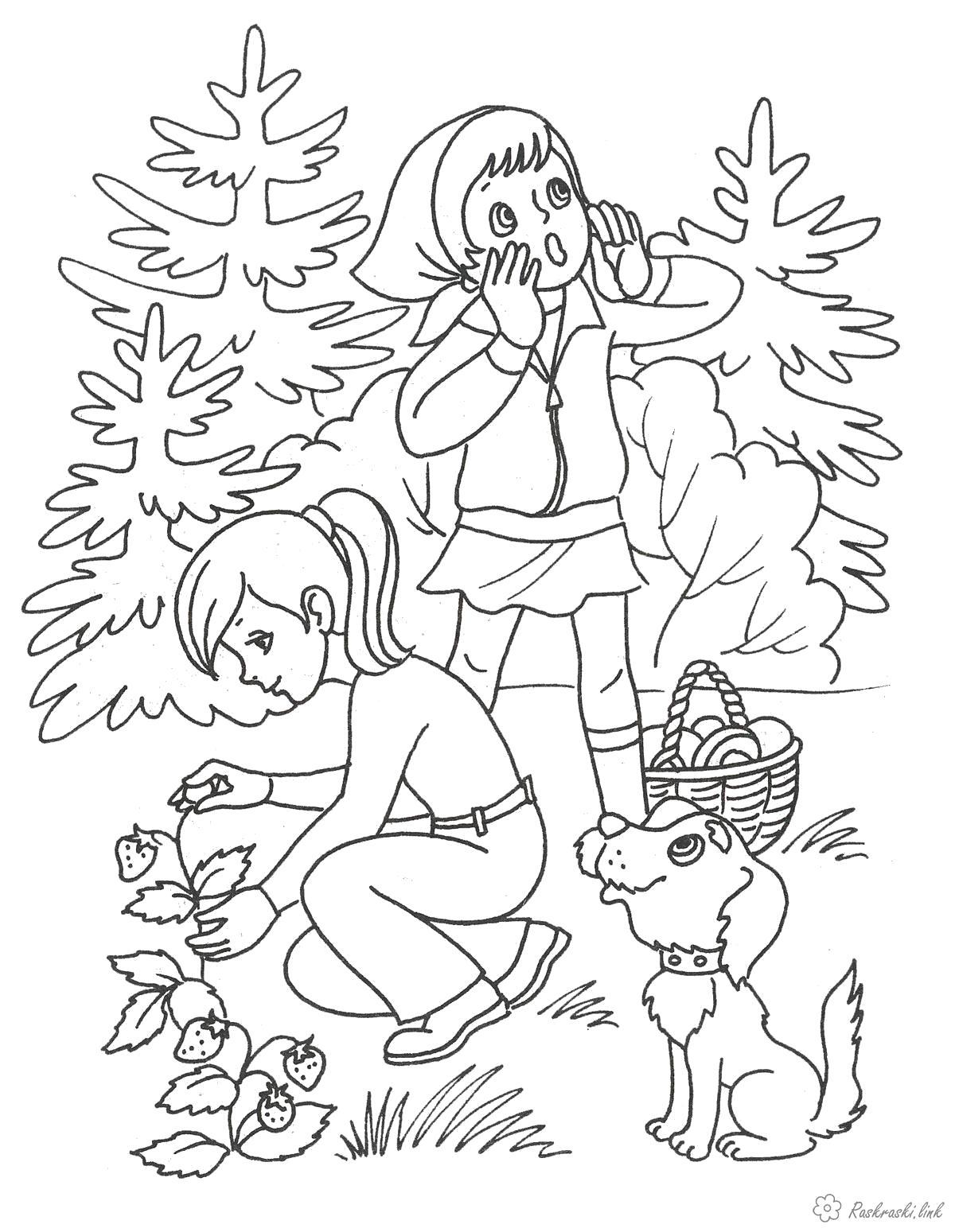 Раскраска  Лето  лето две девочки лес поход собачка. Скачать Лето.  Распечатать Лето