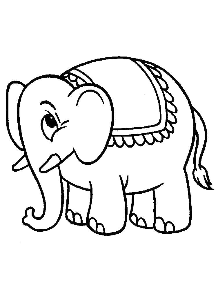 Раскраска маленький Слоник. Скачать слон.  Распечатать Дикие животные