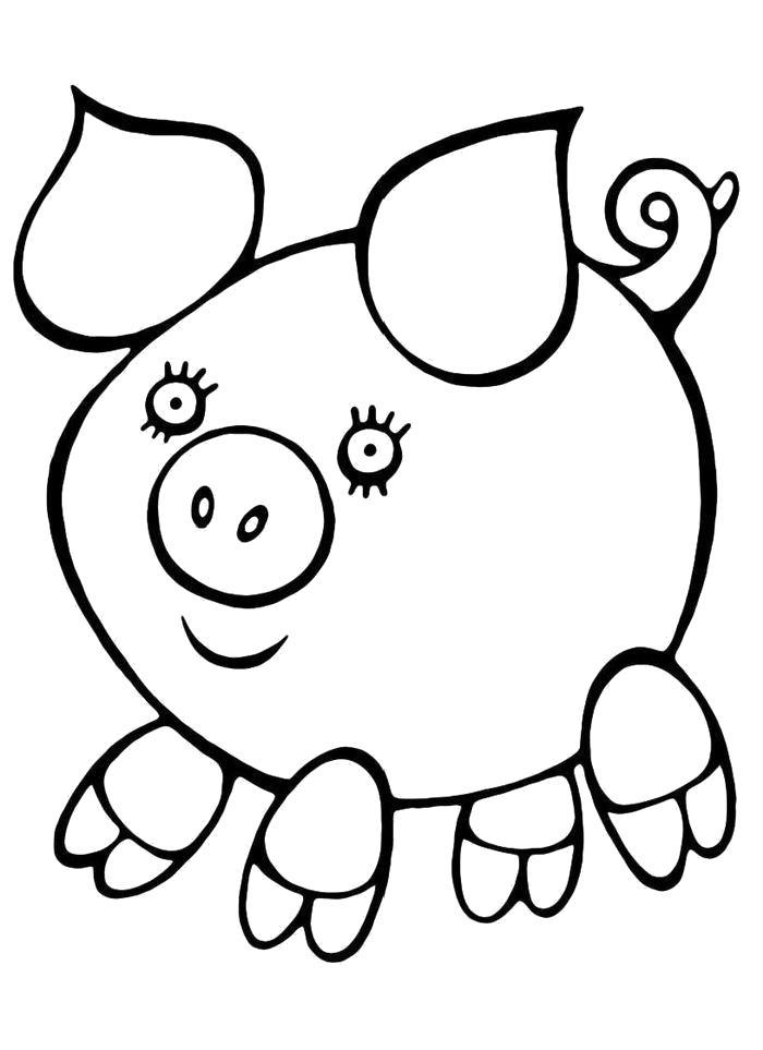 Раскраска  Хрюшка. Скачать Свинья.  Распечатать Домашние животные