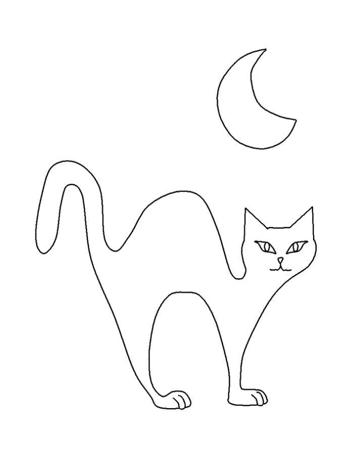 Раскраска  ночная кошка. Скачать кошка.  Распечатать Домашние животные