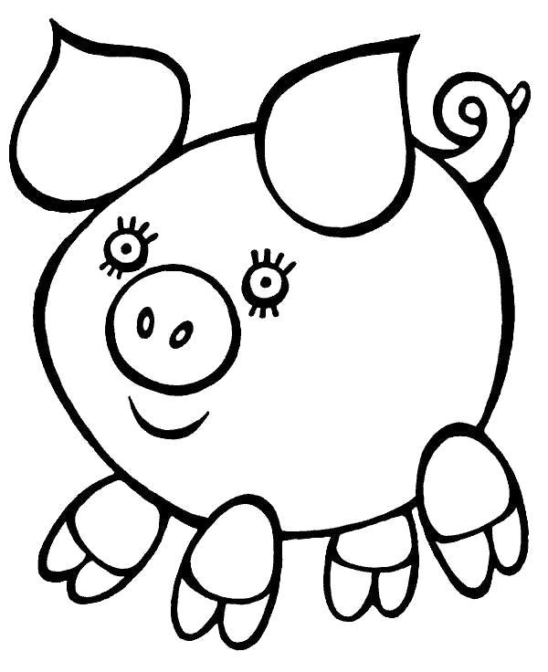 Раскраска Милая свинка.