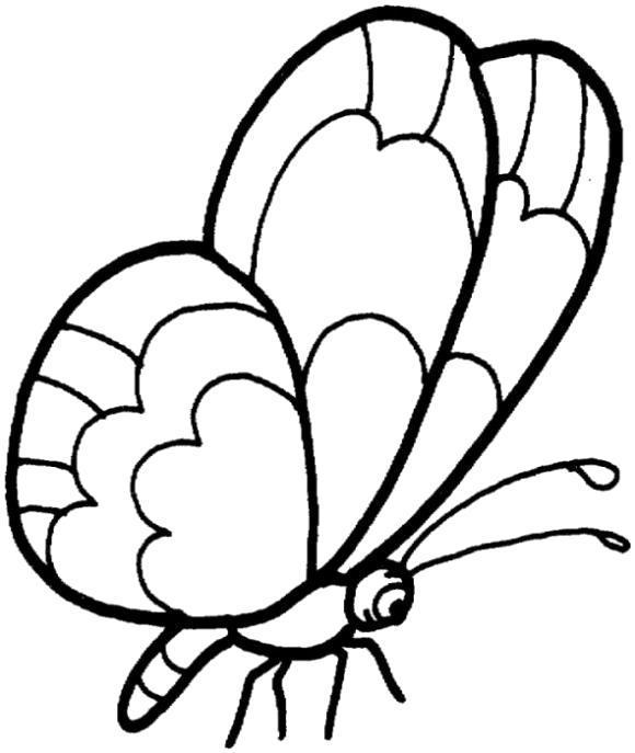 Раскраска Большие крылышки бабочки.