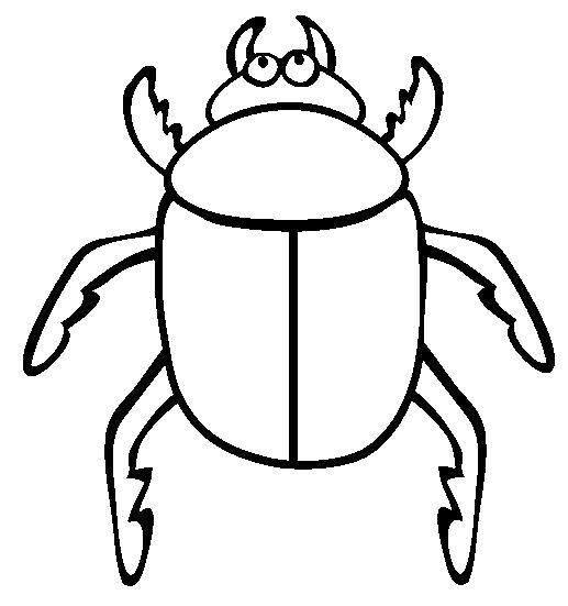 Раскраски жук, Раскраска насекомые жук бабочка муха ...