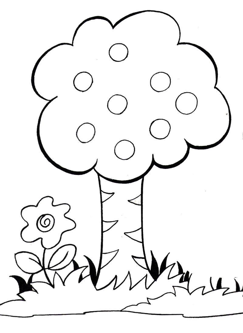 картинки раскраски растения деревья подруги мужчину