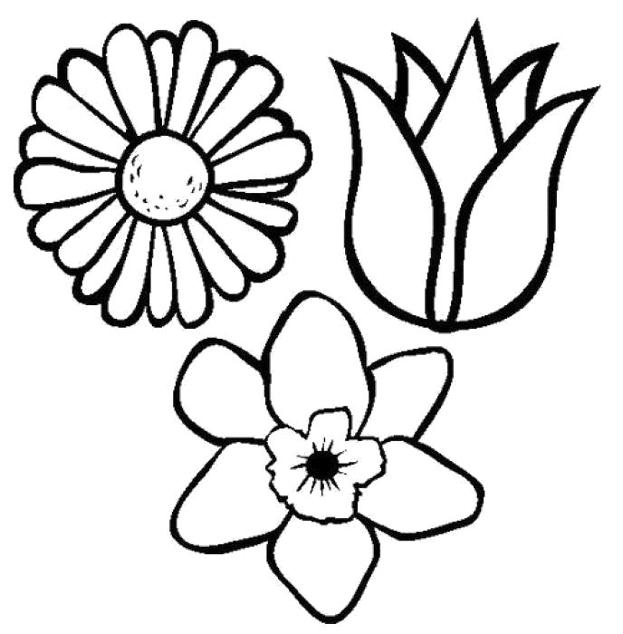 Картинки цветочки маленькие красивые раскраски