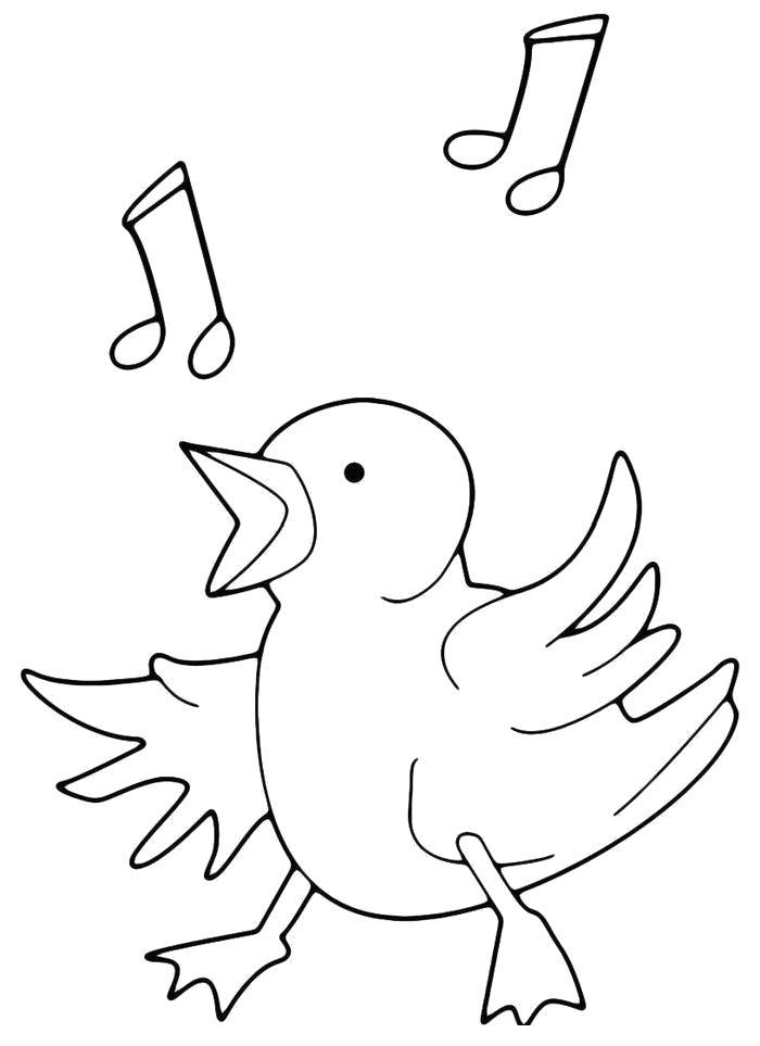 Название: Раскраска Поющий цыпленок. Категория: Домашние животные. Теги: Цыплята.