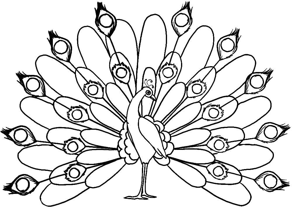 "Раскраска  ""жар птица"" . Скачать Жар птица.  Распечатать Жар птица"