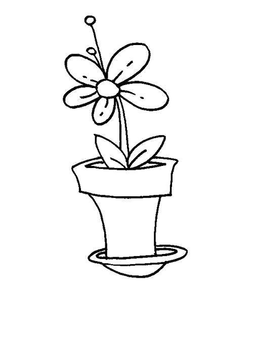 Раскраска  Цветочный горшок с поддоном. Цветы