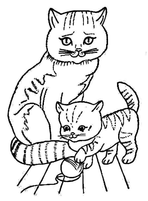 Рисунок как кошка ухаживает за котятами