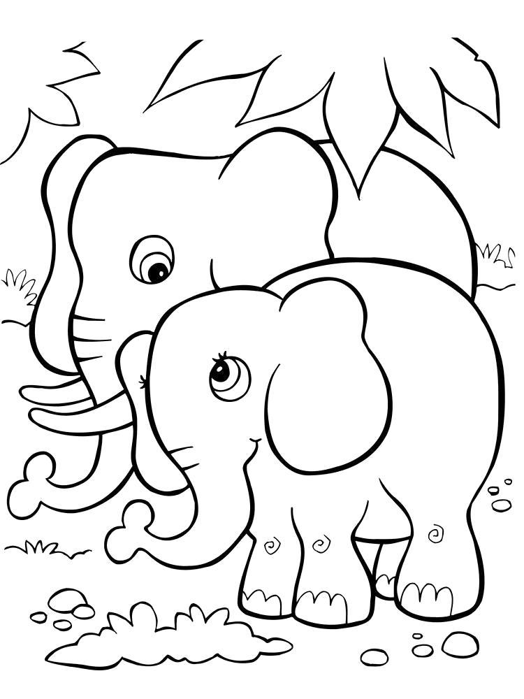картинка слоника для раскрашивания ощущение, фотограф сильно