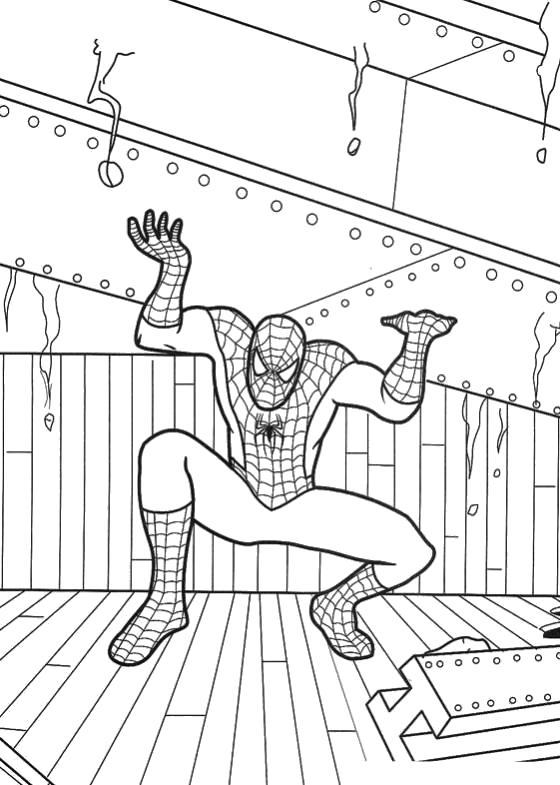 Раскраска Человек паук поднимает тяжести. Человек Паук