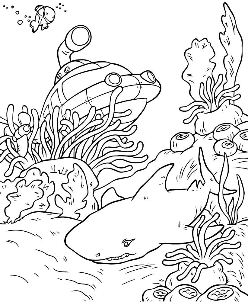 Раскраска Акула на дне.