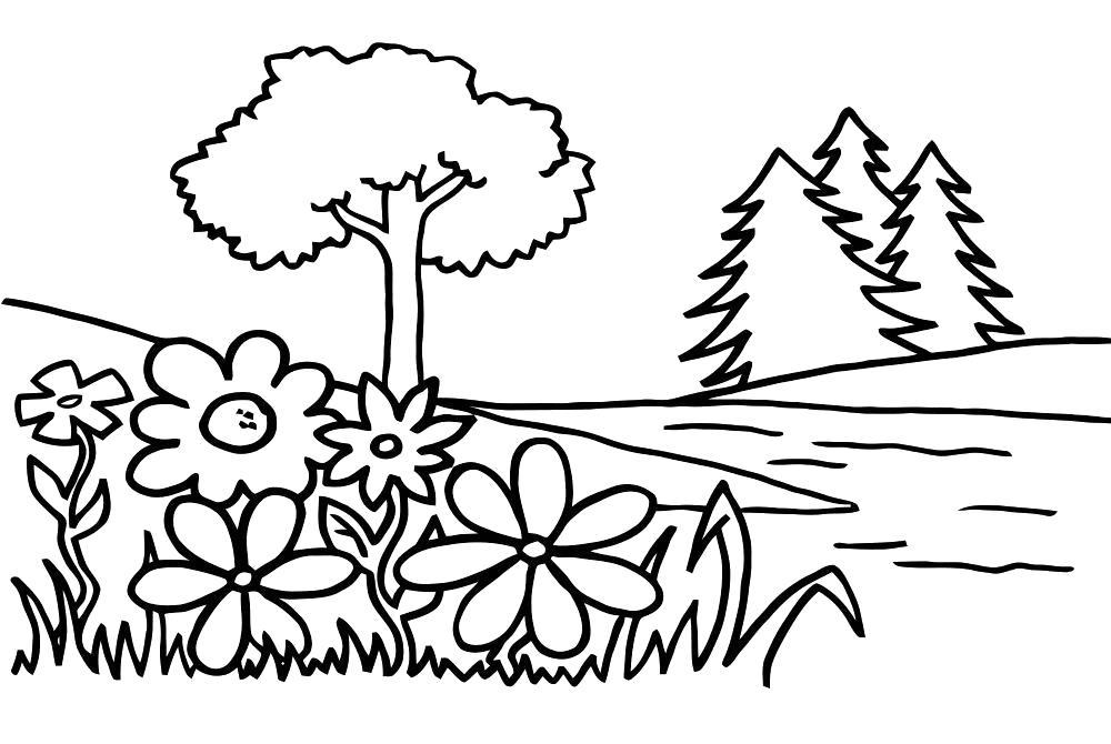 Раскраска цветы на поляне. Скачать цветы.  Распечатать растения