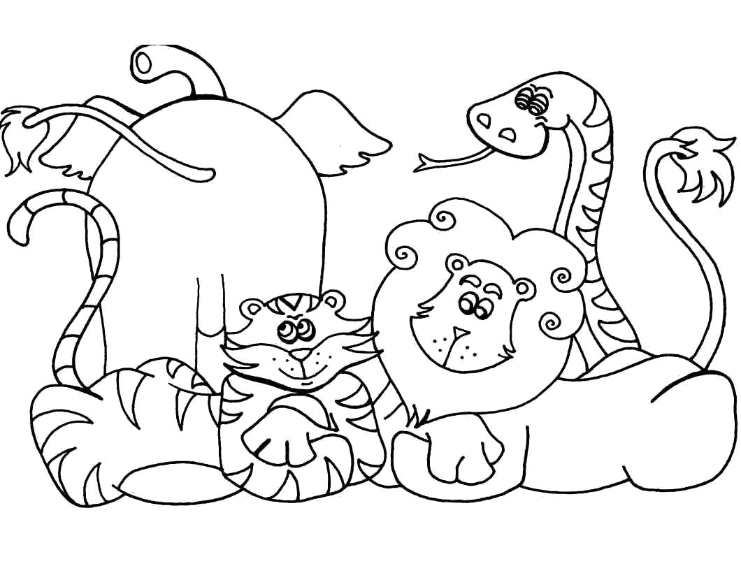 Раскраска Друзья из Африки. животных