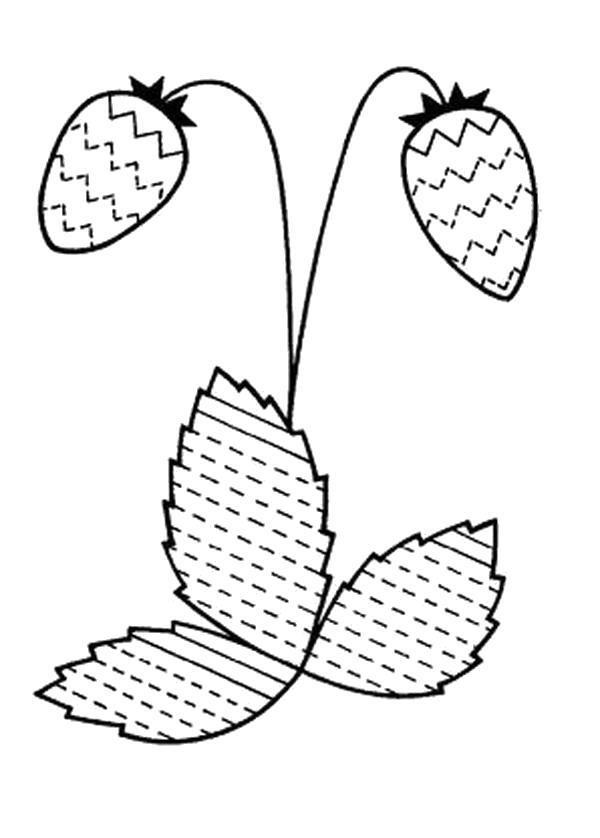 Раскраска штриховка земляника. ягоды
