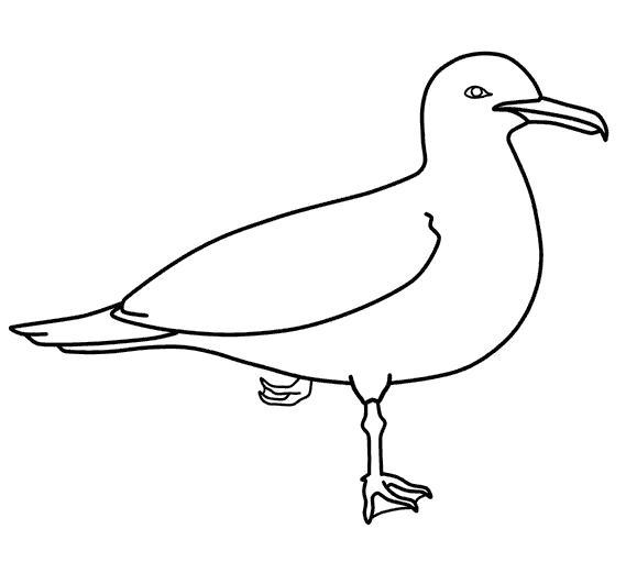 Раскраска контур чайки для вырезания. Чайка