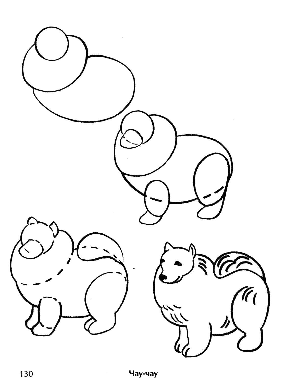 Раскраска Как нарисовать собаку. Скачать Как нарисовать.  Распечатать Как нарисовать
