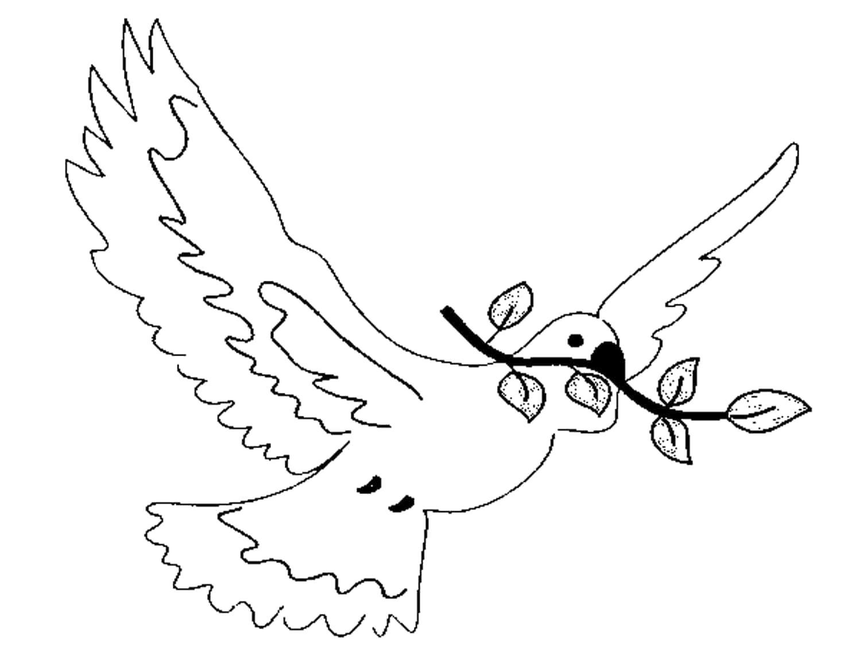 Раскраска  день победы 9 мая голубь мира, голубь победы летит с раскрытыми крыльями и веткой . Скачать 9 мая.  Распечатать День победы