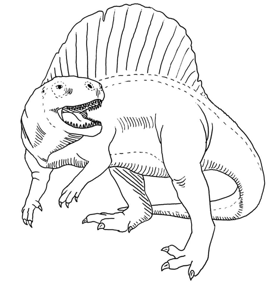 Раскраска  динозавры - распечатать картинки. Скачать динозавр.  Распечатать динозавр