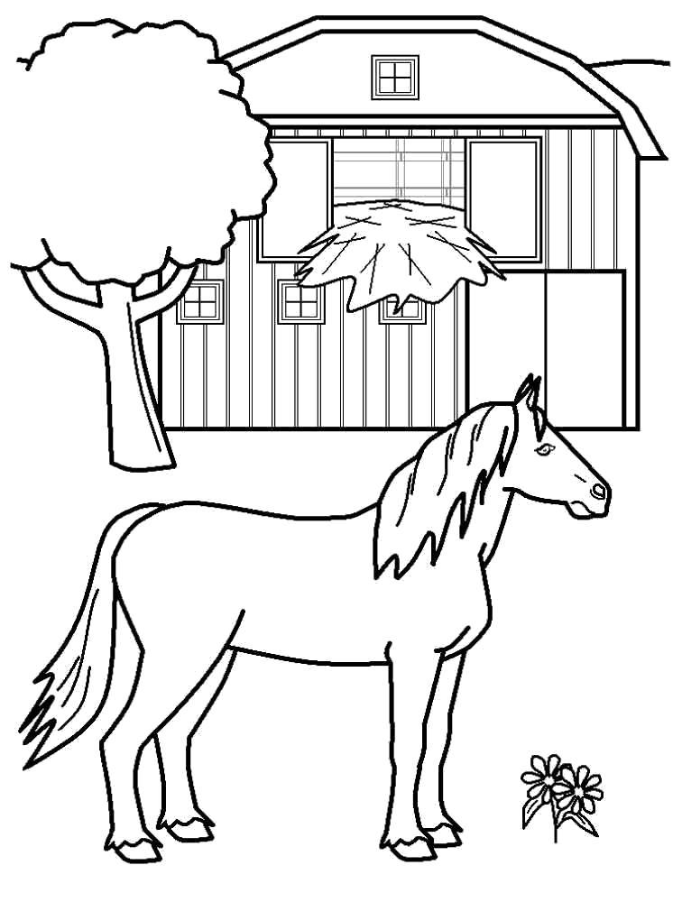 Раскраска Раскраска лошадь. Домашние животные