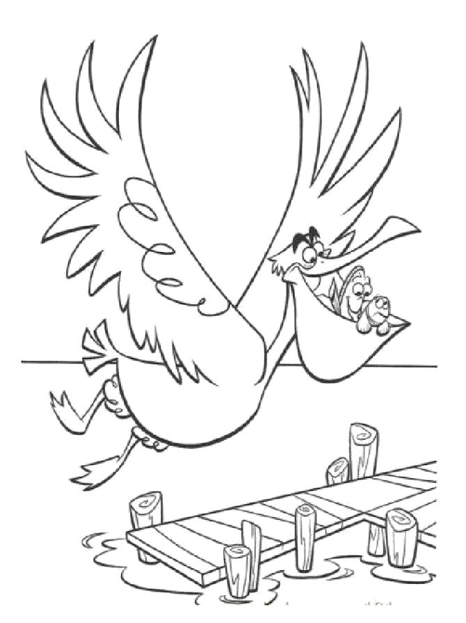 Раскраска Раскраска пеликан. Пеликан