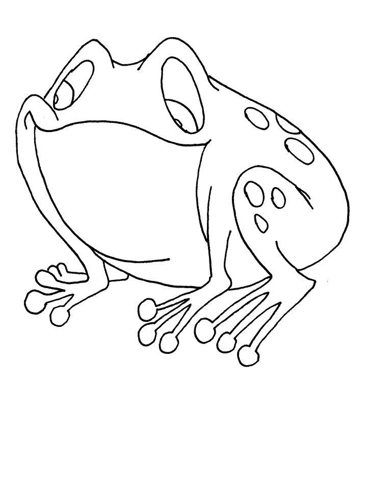 Раскраска Раскраски для детей. лягушка