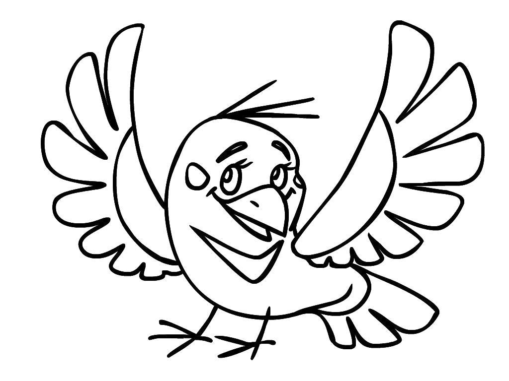 Рисунок для раскрашивания птичка