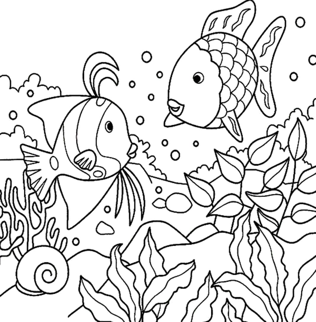 Раскраска раскраска рыбы. Морские животные