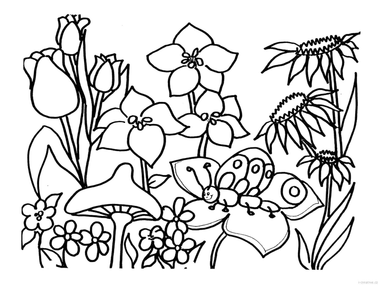 Раскраска Цветочки. Скачать Цветы.  Распечатать Цветы