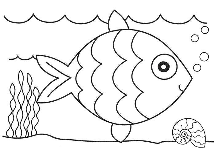 Раскраски Морские животные, Раскраски для скачивания.