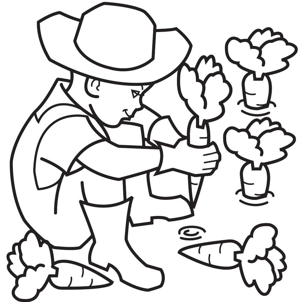 Раскраска Сбор урожая. овощи