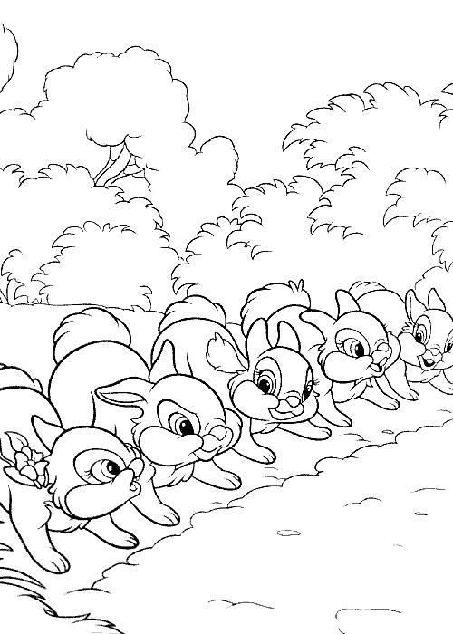 Раскраска раскраска зайцы играют в догонялки. Дикие животные