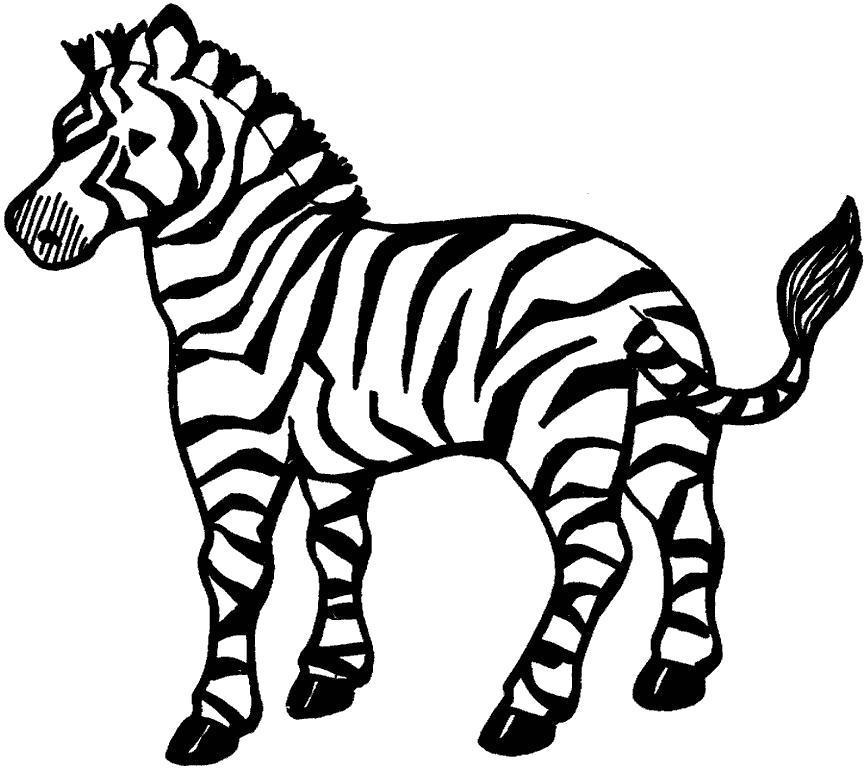 Раскраска зебра.