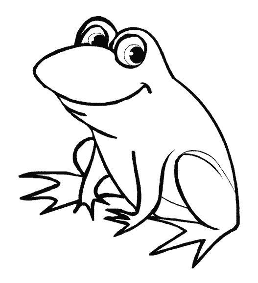 Раскраска frog. лягушка