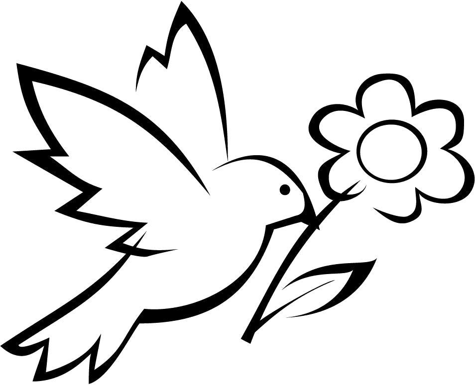 Раскраска Голубь с цветком. Голубь