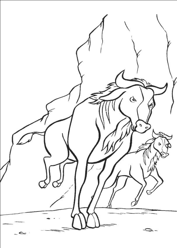 Раскраска Буйвол скачет. Дикие животные