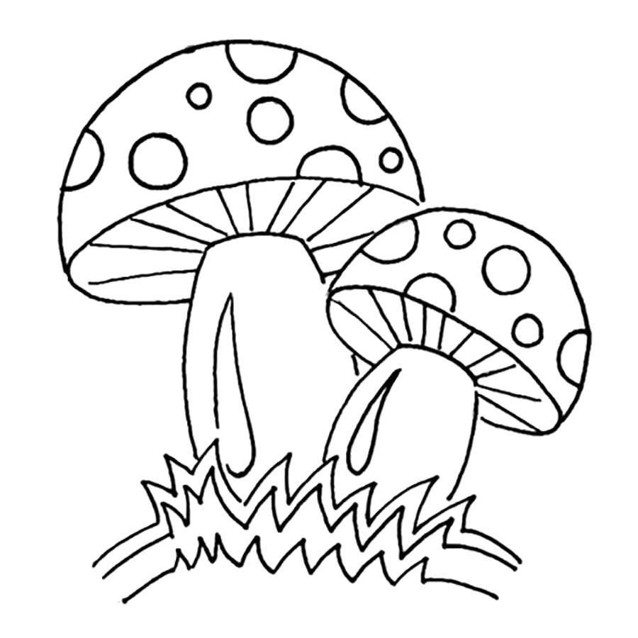 Раскраска Раскраски шаблон гриба мухоморы для вырезания из бумаги, контуры, шаблоны. растения