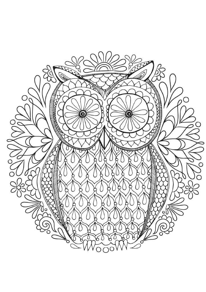 Название: Раскраска Узор с совой. Категория: антистресс. Теги: узоры, птицы.